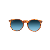 Wild Turtle Gafas Sol Hipster Azul